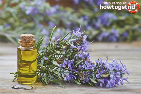 Применение эфирного масла из розмарина