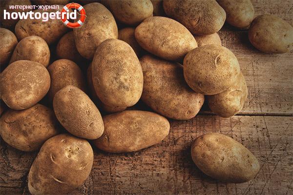 Картофель в рационе кормящей матери