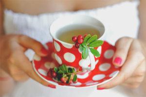 Полезные свойства и противопоказания брусничного чая