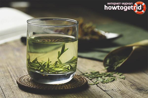 Полезные свойства и противопоказания чая лунцзин