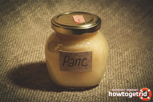 Полезные свойства и противопоказания рапсового меда