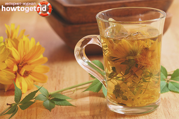 Польза и вред чая из календулы