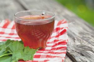 Польза и вред чая из листьев смородины