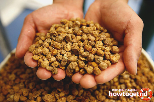 Польза и вред земляного ореха чуфа