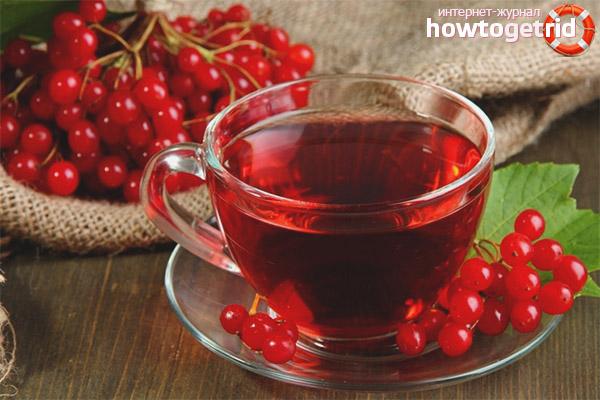 Польза калинового чая