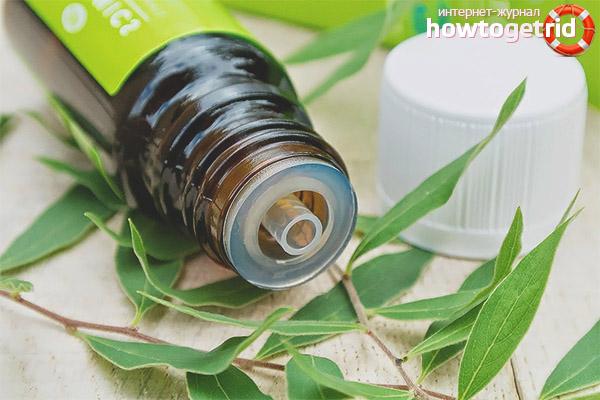 Применение масла чайного дерева в лечебных целях
