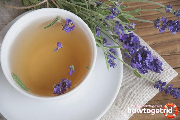 Противопоказания чая из лаванды