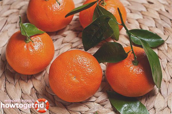 Противопоказания мандарин при грудном вскармливании