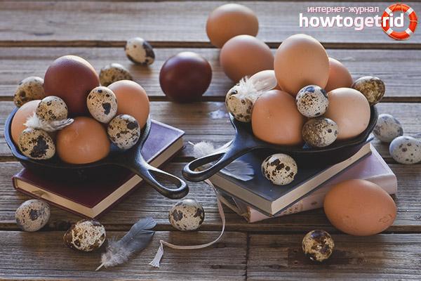 Сколько яиц можно есть в день взрослым и детям