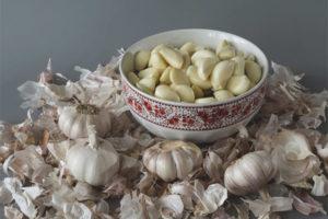 Полезные свойства и применение чесночной шелухи