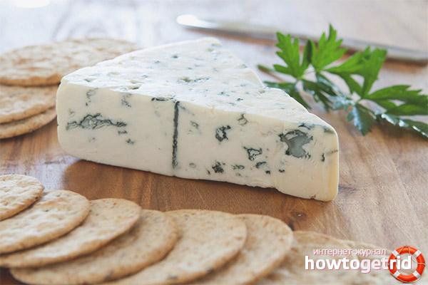 Секреты сыра с плесенью