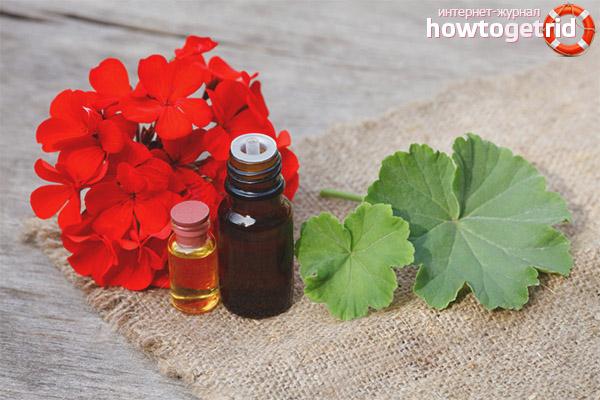 Эфирное масло герани для лица