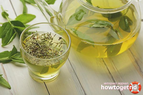Чем полезен зеленый чай для женщин и мужчин