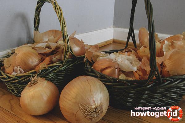 Как применять луковую кожуру на огороде