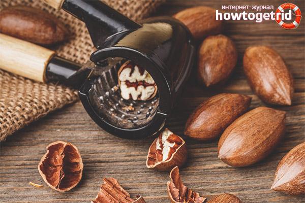 Как выбирать, чистить и хранить орехи пекан
