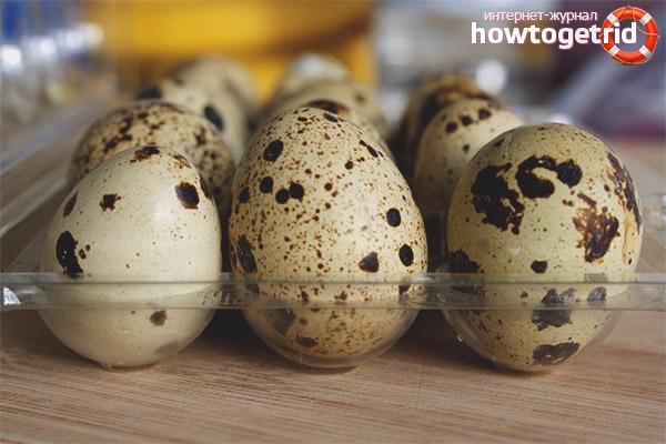 Как выбрать перепелиные яйца