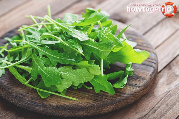 Рецепты салатов с рукколой