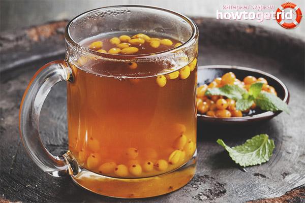 Тонкости приготовления чая из облепихи