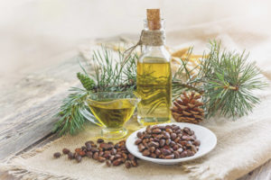 Лечебные свойства кедрового масла