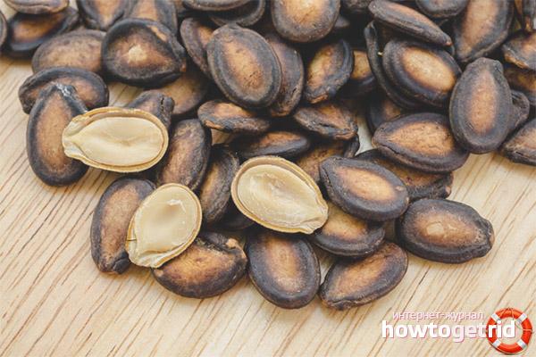 Польза семечек арбуза