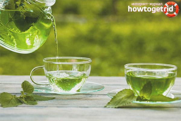 Приготовление чая с мелиссой