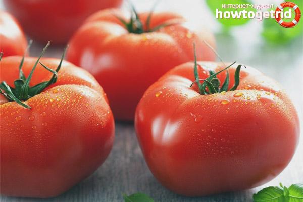 Болезни и вредители томатов Клубничный десерт