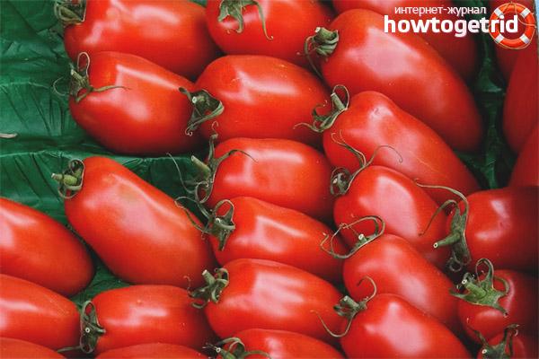 Хранение томатов Воловьи уши