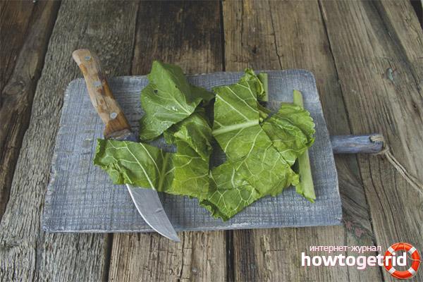 Как используют листья хрена в народной медицине