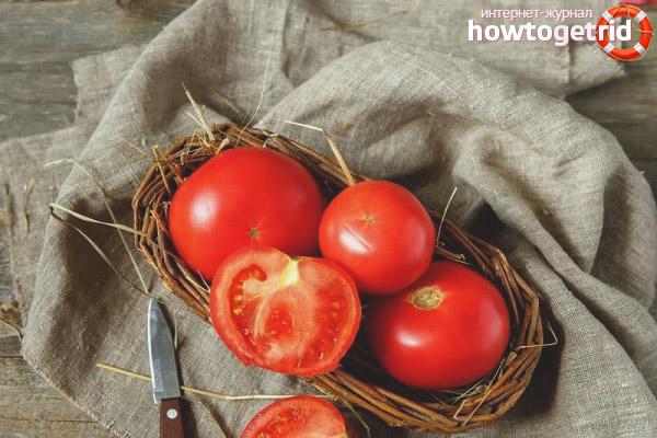 Особенности томата Главный калибр