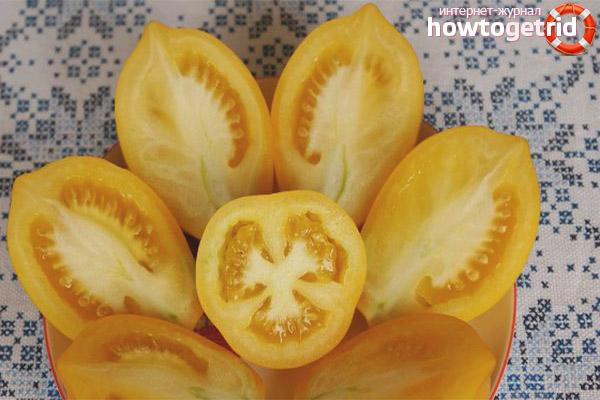 Почему наблюдается не урожай томатов анна герман