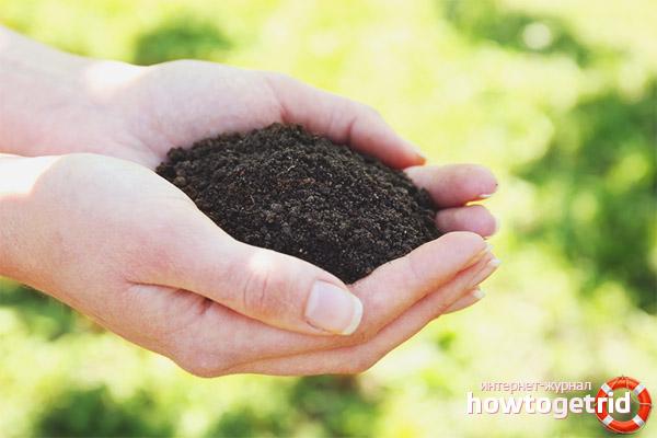 Почва для томатов Бравый генерал