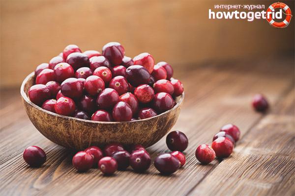 Польза ягод клюквы для организма