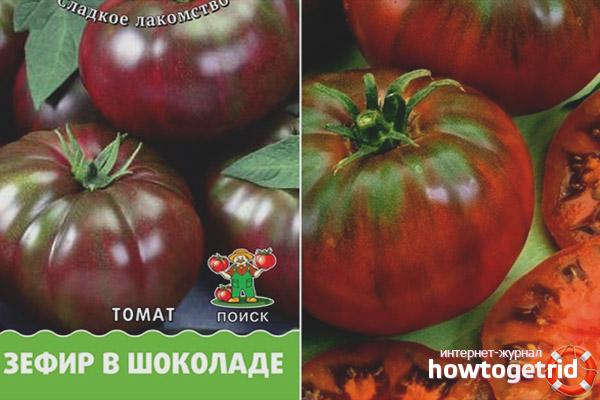 Правильный выбор семян томатов Зефир в шоколаде