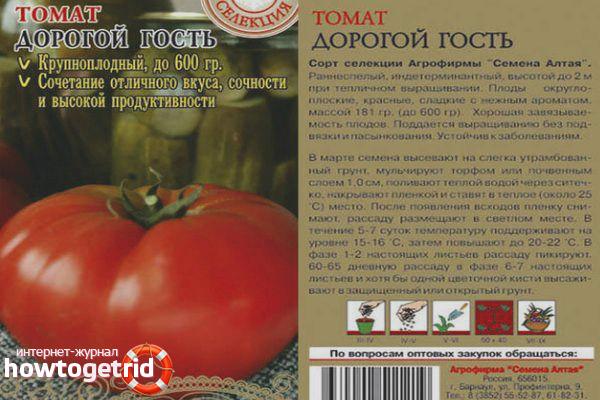 Рекомендации по выращиванию томатов Дорогой гость