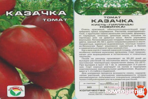 Томат Казачка