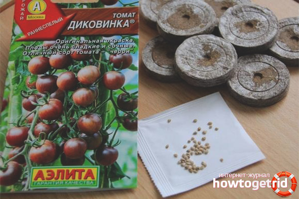 Выращивание томатов Диковинка
