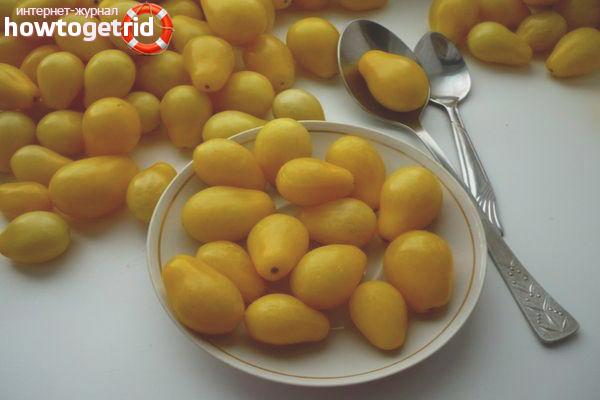 Выращивание томатов Золотая капля