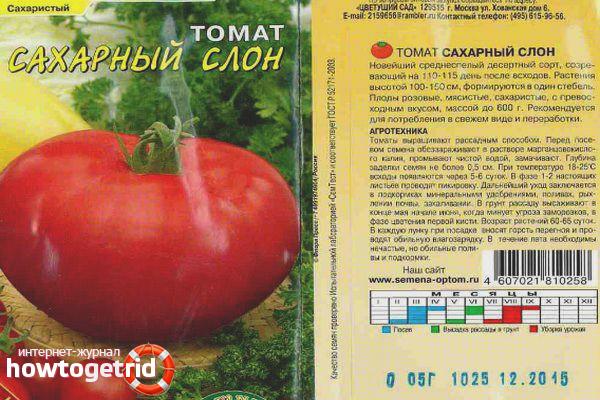 Как выращивать помидоры сорта Сахарный слон