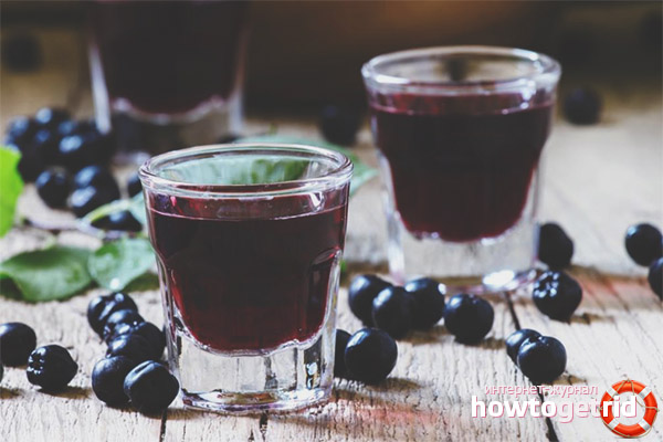 Рецепты настоек из черноплодки