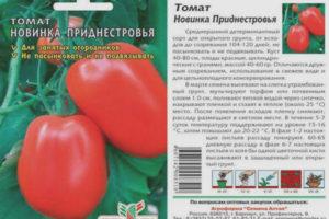 Томат Новинка приднестровья