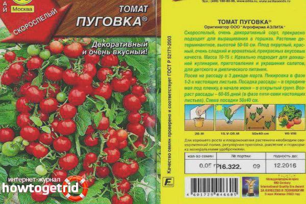 Томат Пуговка