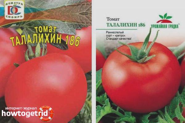 Томат Талалихин 186