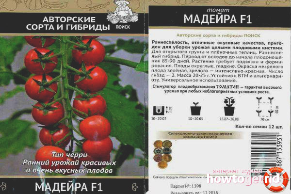 Выращивание томатов Мадейра