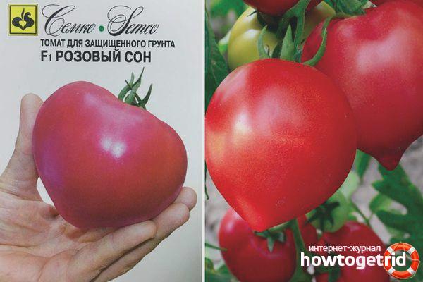 Выращивание томатов Розовый сон F1
