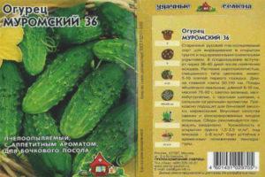 Огурец Муромский 36