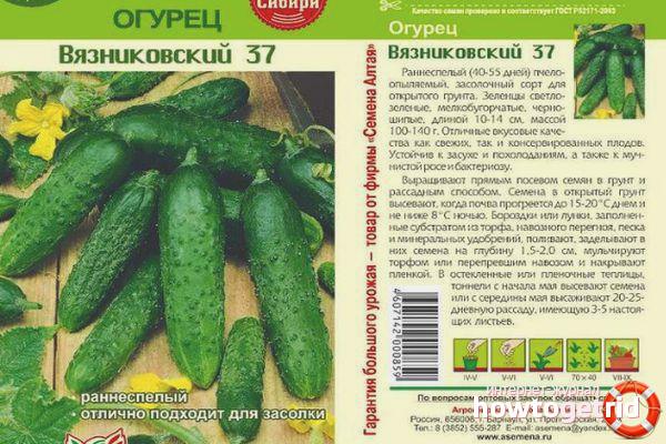 Огурец Вязниковский 37