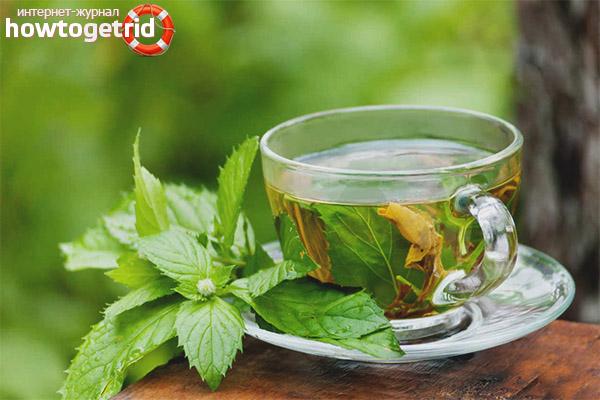 Рецепты чая из листьев малины