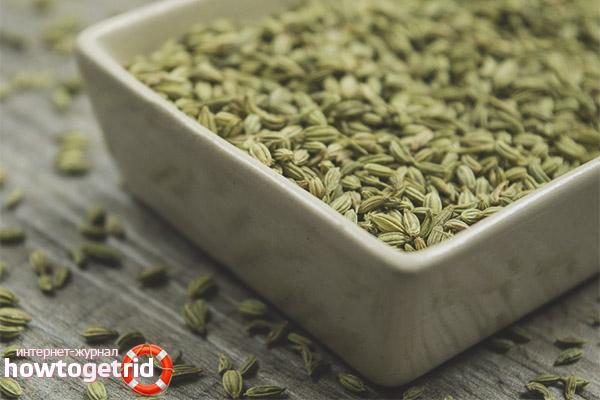 Чем полезны семена фенхеля
