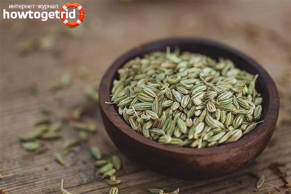 Вред и противопоказания семян фенхеля