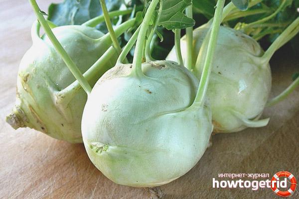 Способы сохранения и заготовки капусты кольраби